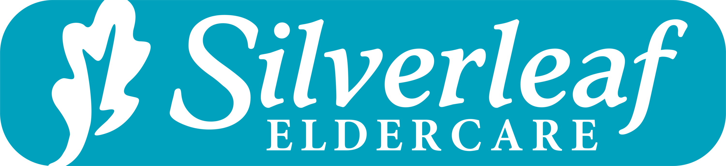 Silverleaf Eldercare Residential Assisted Living